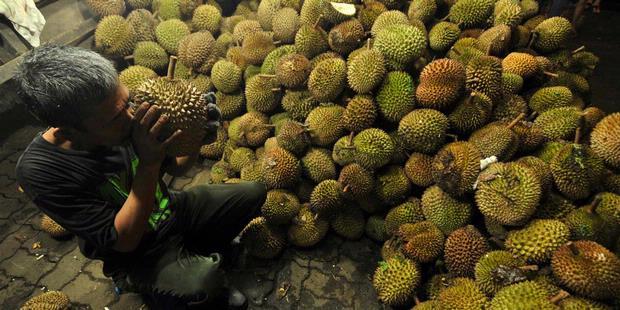 Potensi Durian untuk Pasar Sumatera Utara