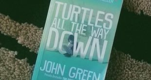 Mengenal Penyakit Mental Melalui Novel Turtles All The Way Down